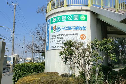 夢の島1.JPG