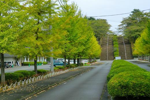 散歩1-7.JPG