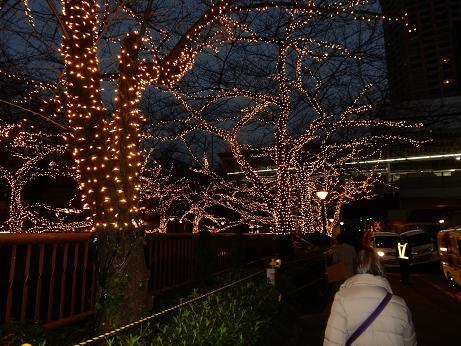 目黒川8.JPG