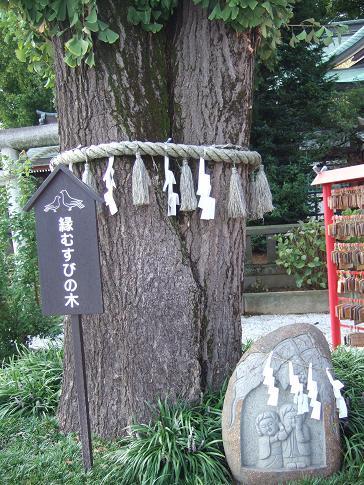 結婚記念日7.JPG