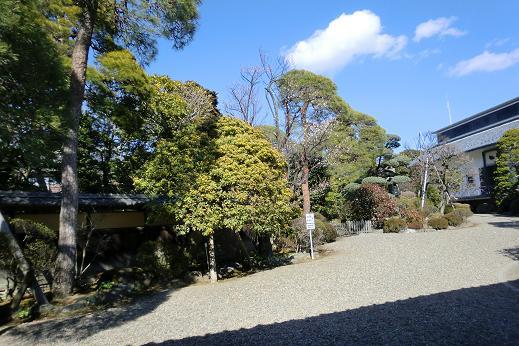 遠山1-3.JPG