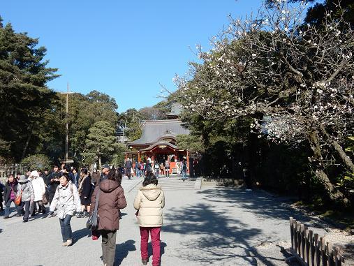 鎌倉1-5.JPG