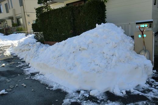 雪2-3.JPG