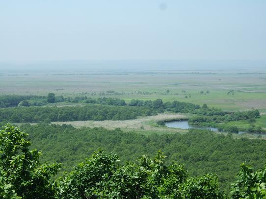 湿原2-2.JPG